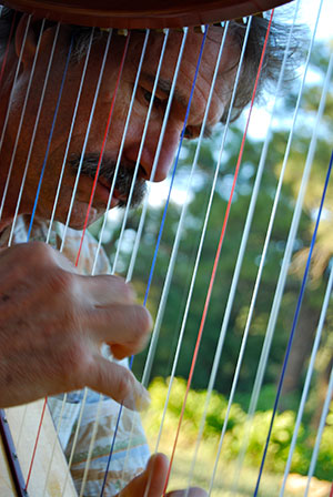 Ross Barrable Playing Harp